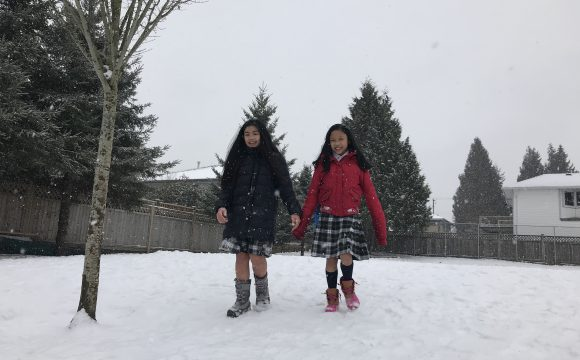 A Snowy Day in February (2018)